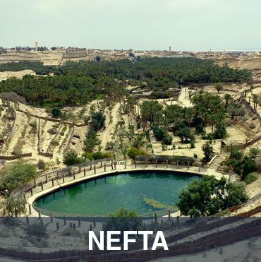 Nefta