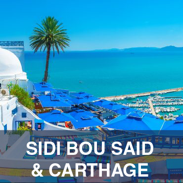 Sidi Bou said & Carthage